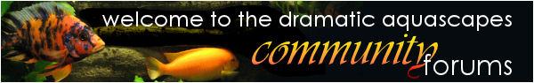 Dramatic AquaScapes • Information