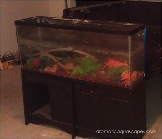 Dramatic AquaScapes - DIY Aquarium Background - Aaron ...
