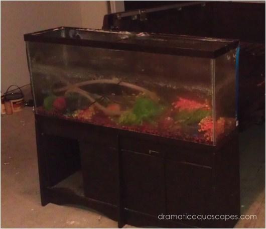 Dramatic AquaScapes - DIY Aquarium Background - Aaron ...