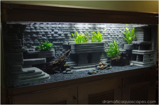 Diy Aquarium Background Fish Tank Wallpaper Size