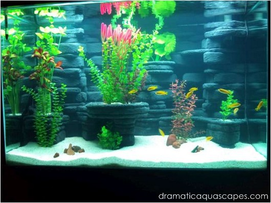 Dramatic AquaScapes - DIY Aquarium Background - Kodey ...