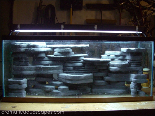 Dramatic Aquascapes Diy Aquarium Background Larry Davy In The Community Spotlight