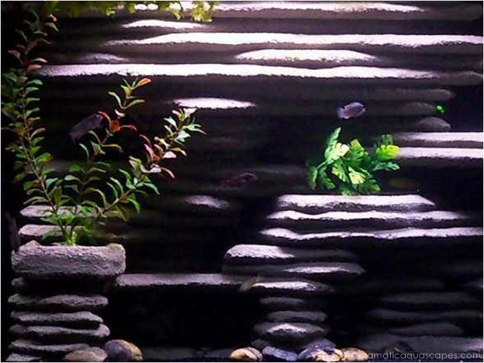Dramatic Aquascapes Diy Aquarium Background Ryan Lavigne In The Community Spotlight