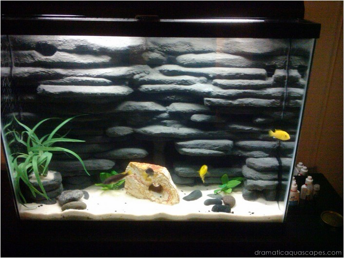 Dramatic Aquascapes Diy Aquarium Background Travis