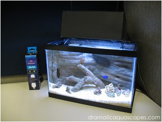 Dramatic Aquascapes Diy Aquarium Background Mini 10
