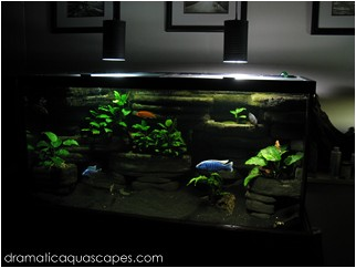 Dramatic aquascapes do it yourself hanging pendant aquarium plant dramatic aquascapes do it yourself hanging pendant aquarium plant lights aloadofball Images