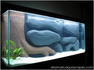 Dramatic Aquascapes Diy Aquarium Background Submersed