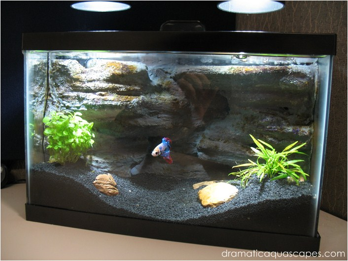Dramatic Aquascapes Diy Aquarium Background Betta Paradise